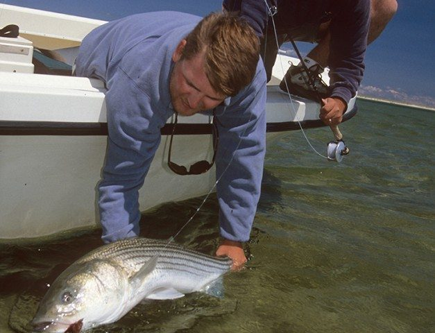 5 Tips for Successful Catch & Release